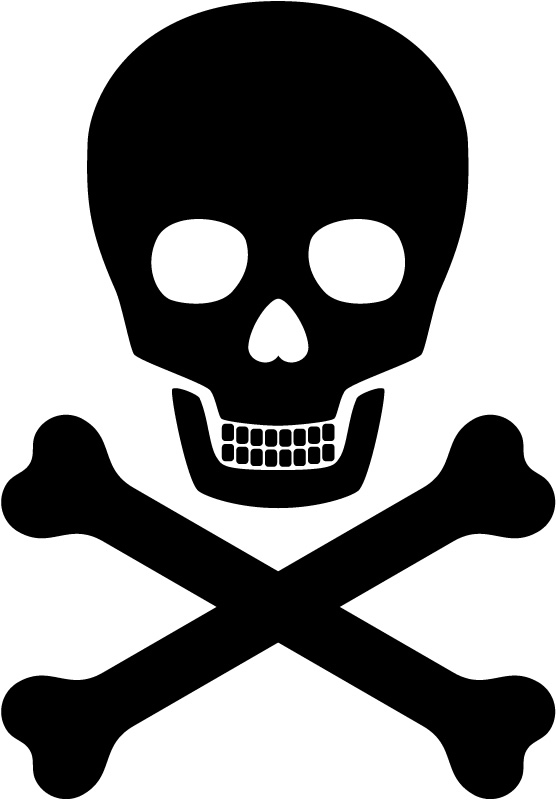 Kids Pirate Skull And Crossbones