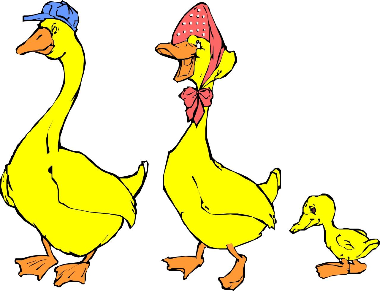 Pictures Of Cartoon Ducks