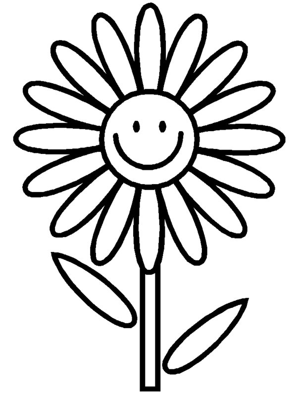 medium daisy flower coloring pages - photo#19