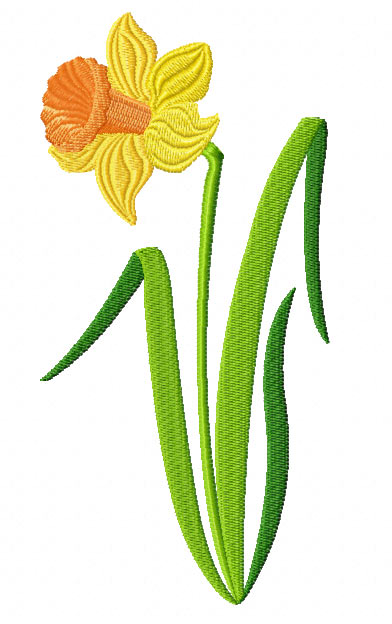 one long daffodil . Free cliparts that you can download to you ...
