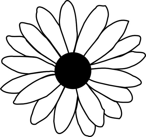 Line Drawing Of Flowers Clipart : Line drawing flowers clip art clipart best