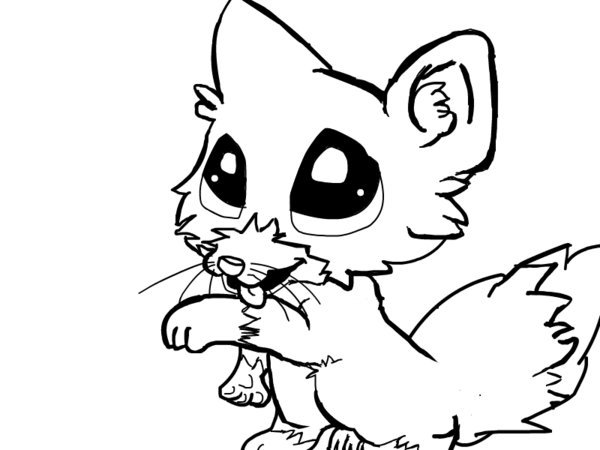 Cute Colouring Pages Baby Wolf Clipart Best