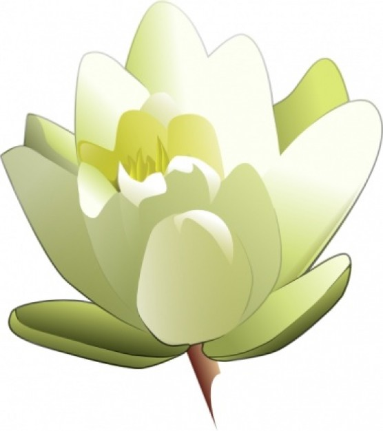 Water Lily Clip Art - ClipArt Best: www.clipartbest.com/water-lily-clip-art