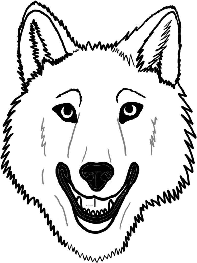 Line Drawing Wolf Face : Wolf face drawing clipart best