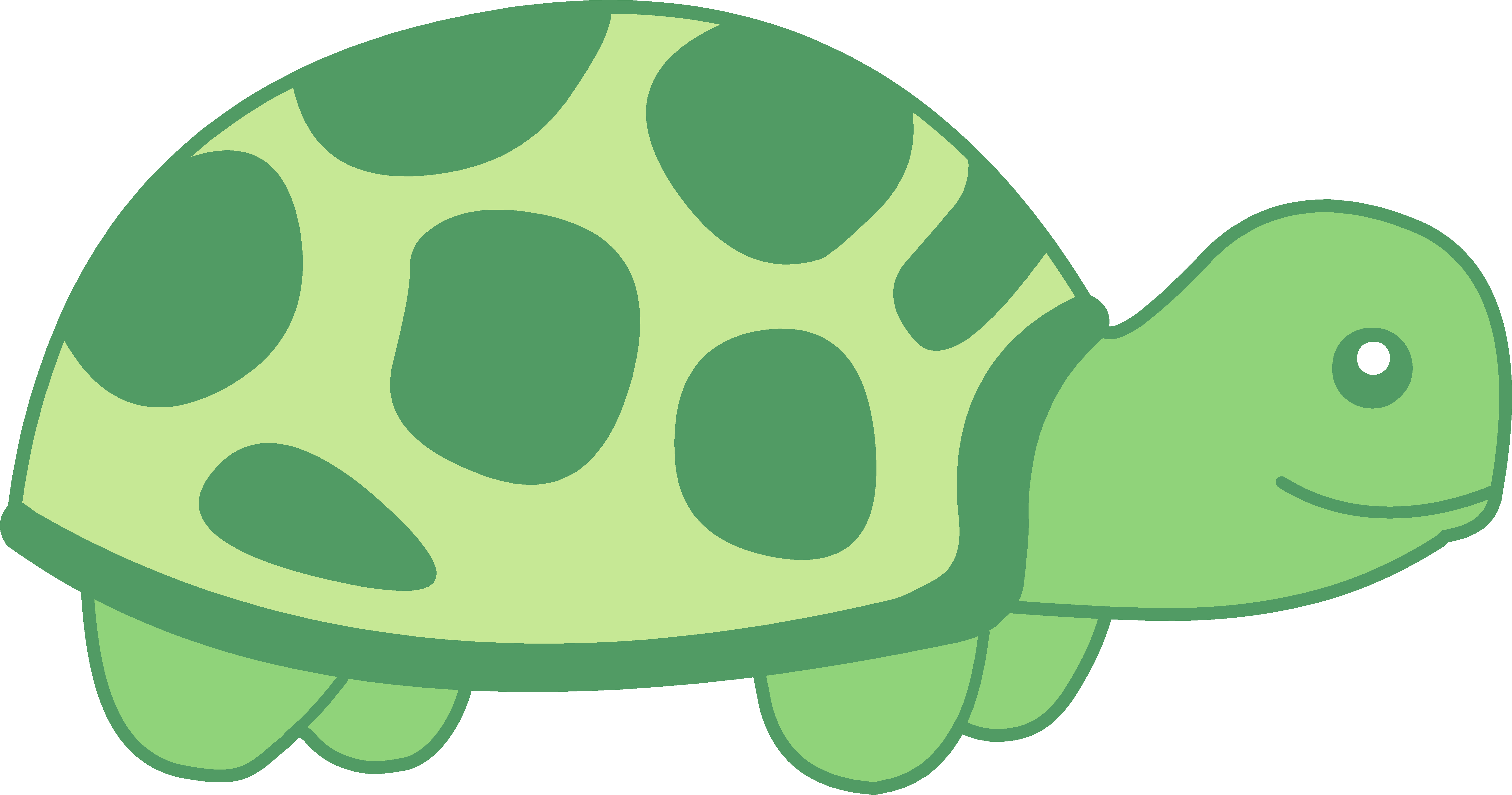 Turtle in shell clipart