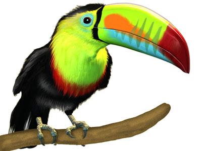 Clip Art Toucan Clipart toucan clipart best clipart