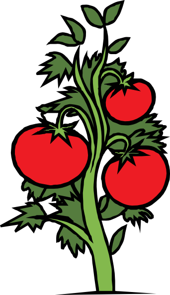 64 clip art plants . Free cliparts that you can download to you ...