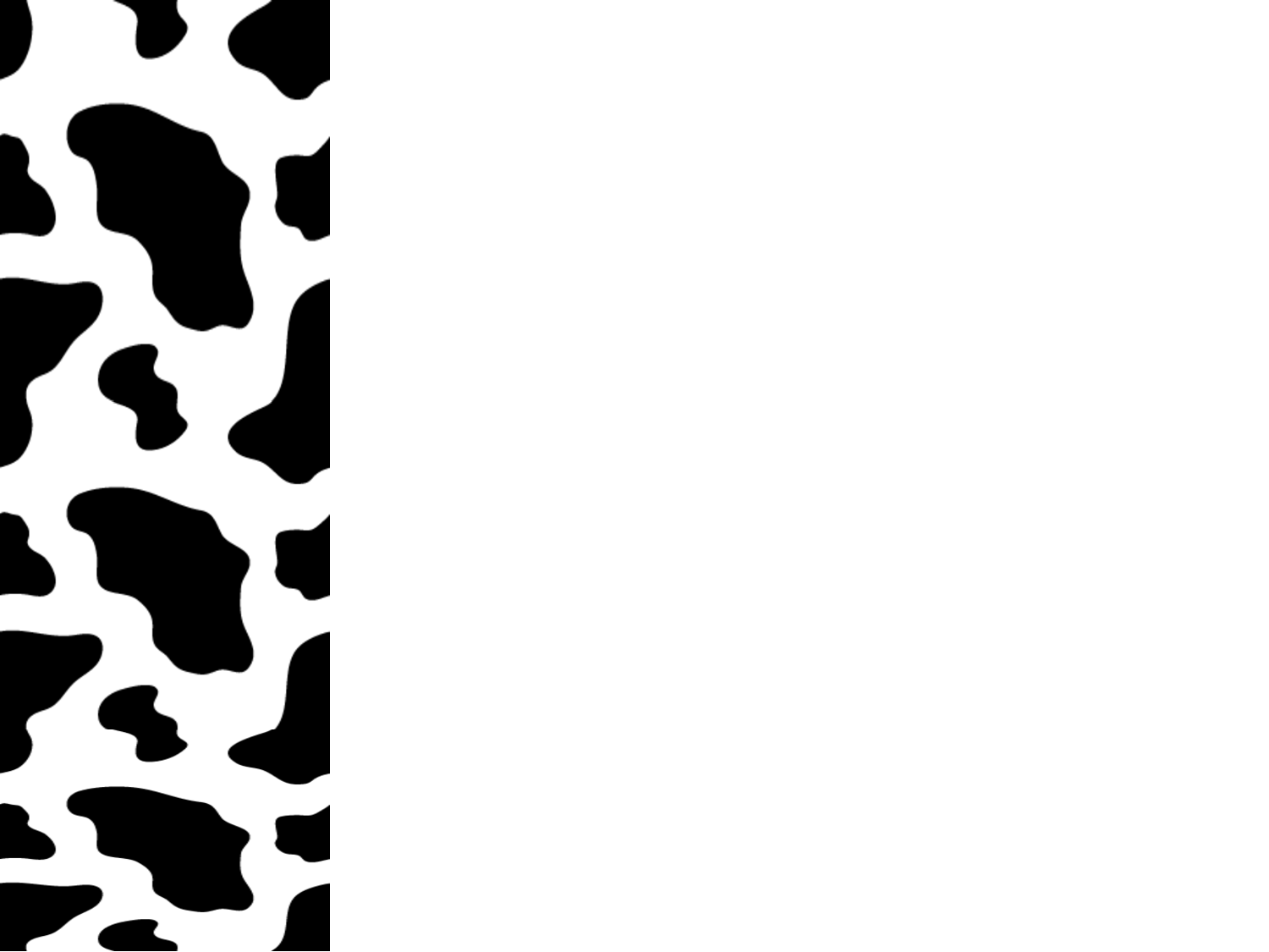 Cow Invitation with best invitation sample