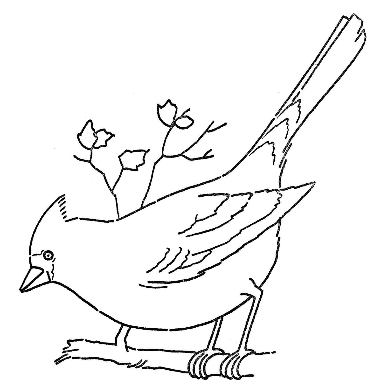 Line Art Clipart : Clip art cardinal bird clipart best