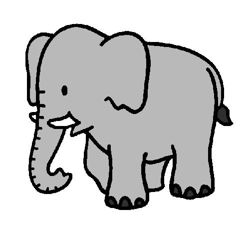 Dessin elephant clipart best - Dessin elephant ...