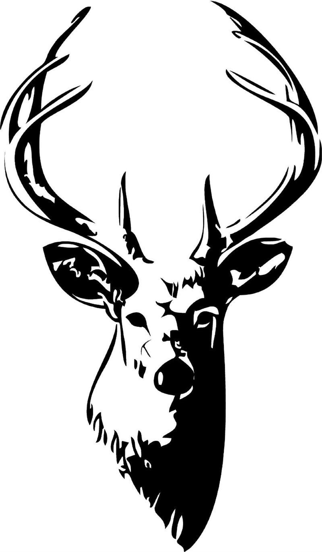 Line Drawing Deer : Deer head drawings clipart best