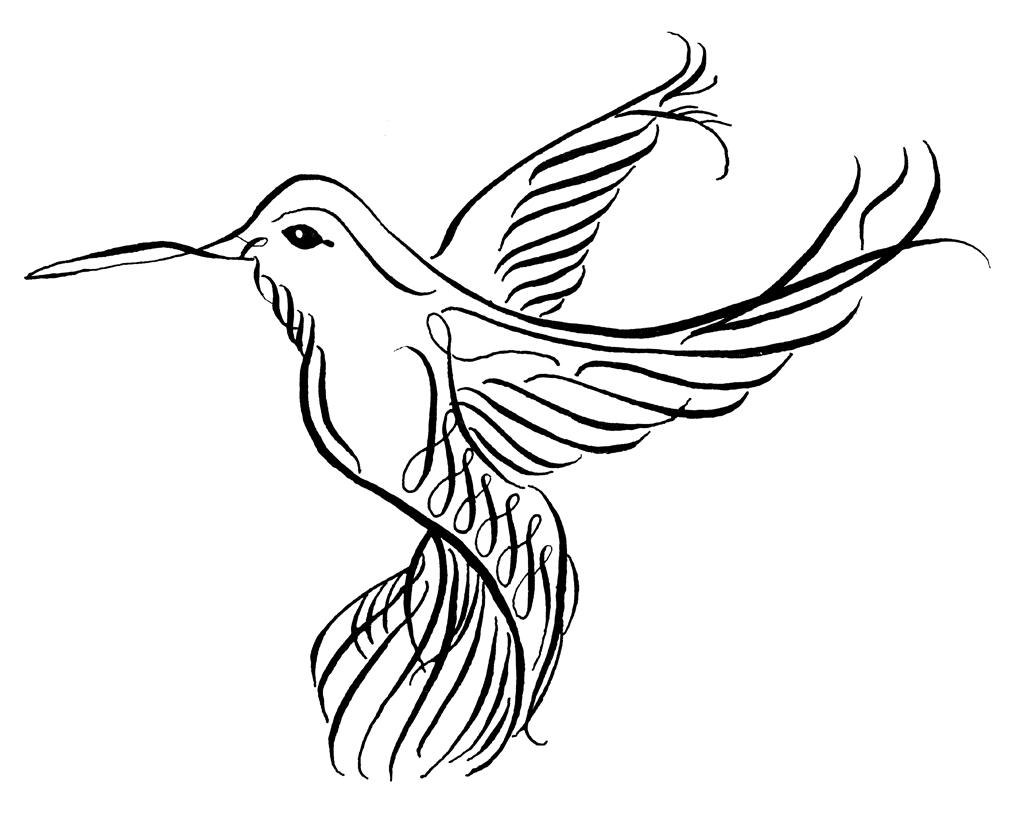Line Art Hummingbird : Hummingbird drawings clipart best