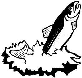 Clip Art Salmon Clip Art free salmon clip art clipart best download on