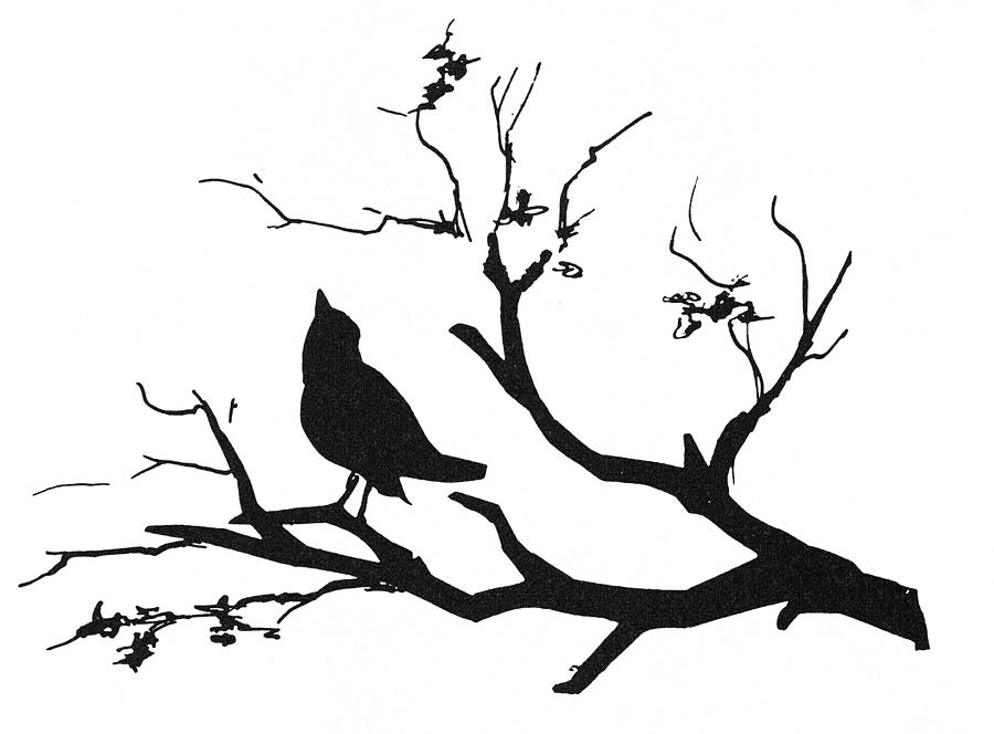 quail silhouette clip art - photo #47
