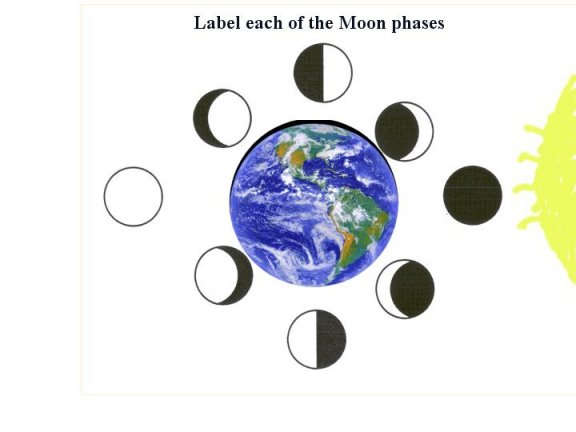 Third Grade Science Worksheets and Printables  Educationcom