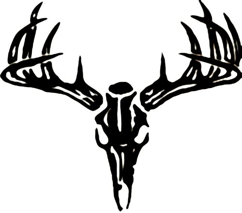 Deer Drawing Drawings of Deer Skulls