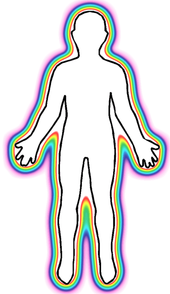 Outline of a human bodyOutline Of A Human Body