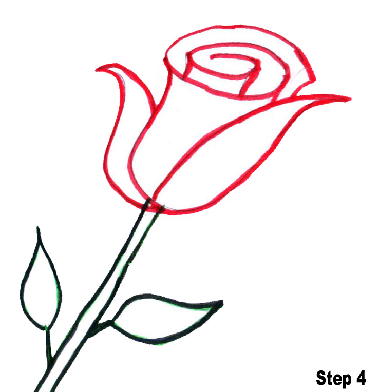 Simple Line Art Rose : Line drawings of roses clipart best