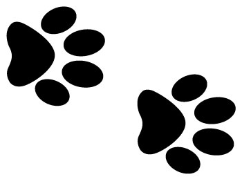 how to take your dogs paw print