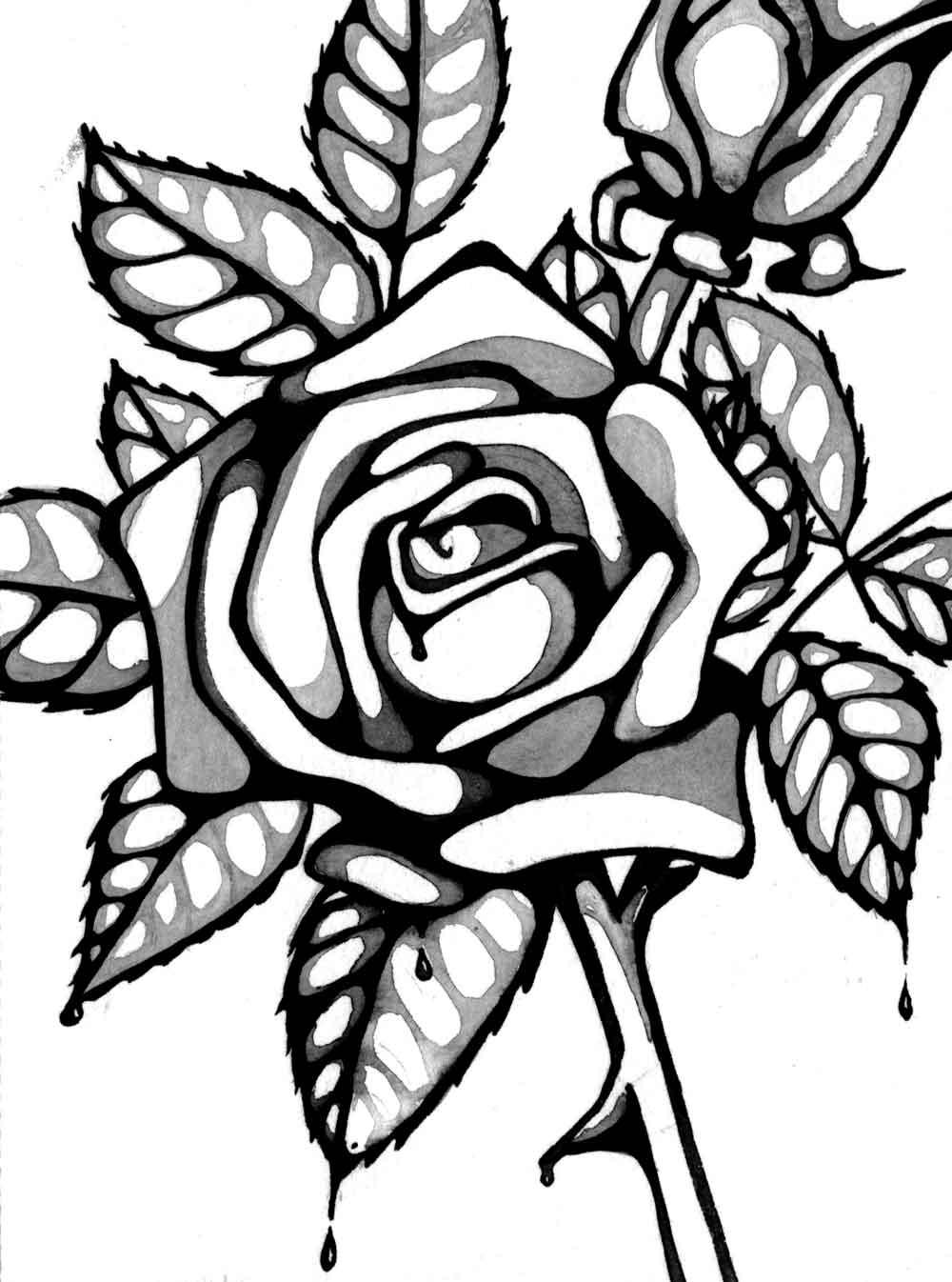 Line Art Of Rose : Rose line drawings clipart best