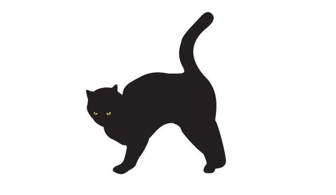 Scared Black Cat Silhouette