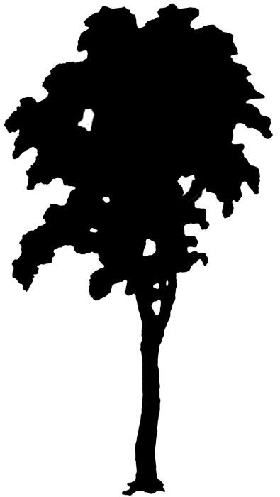 clip art tree silhouette - photo #20