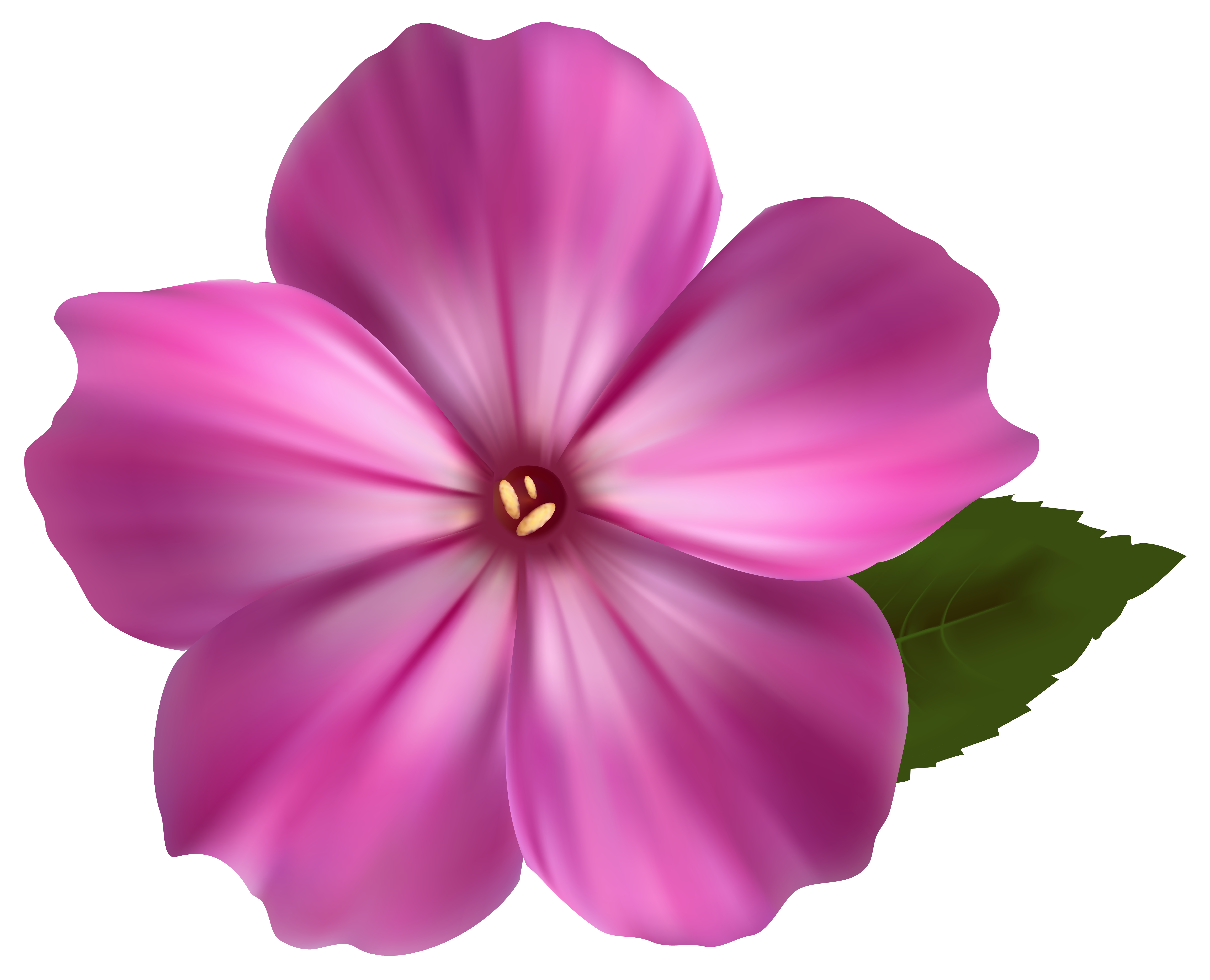 Flower Png Image Clipart Best