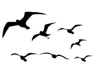 Flock Of Birds Tattoo - ClipArt Best