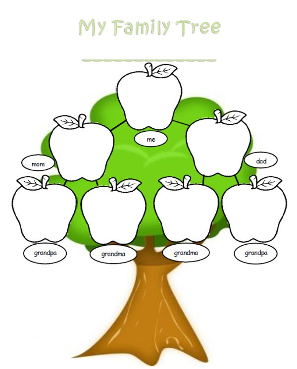 Blank family tree clipart best for Plain family tree template
