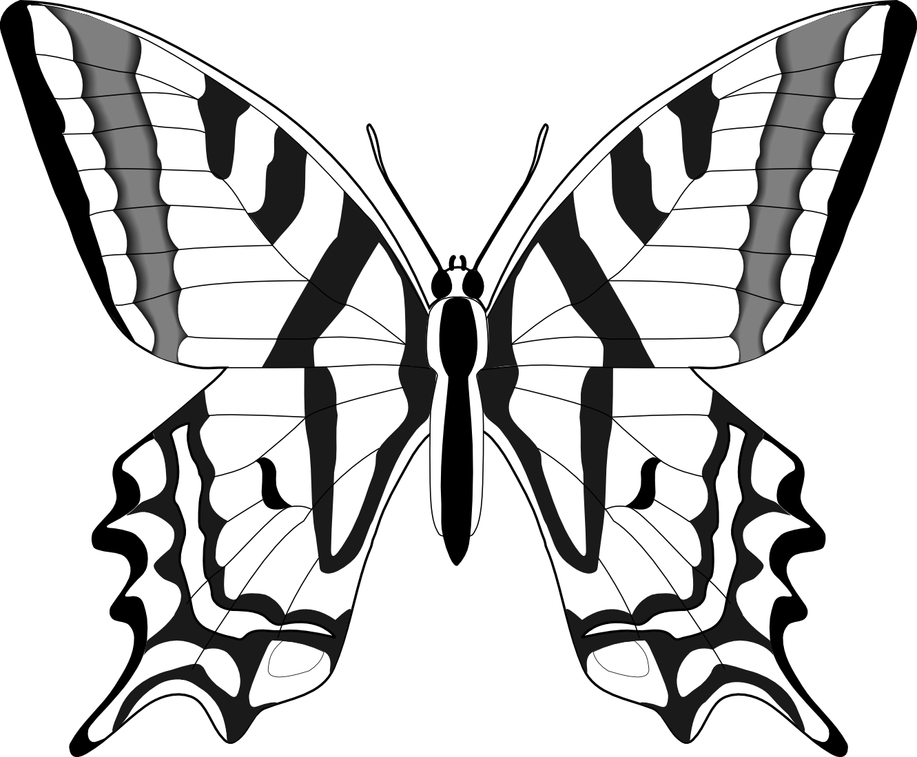 Line Art Work : Butterfly line drawings clipart best