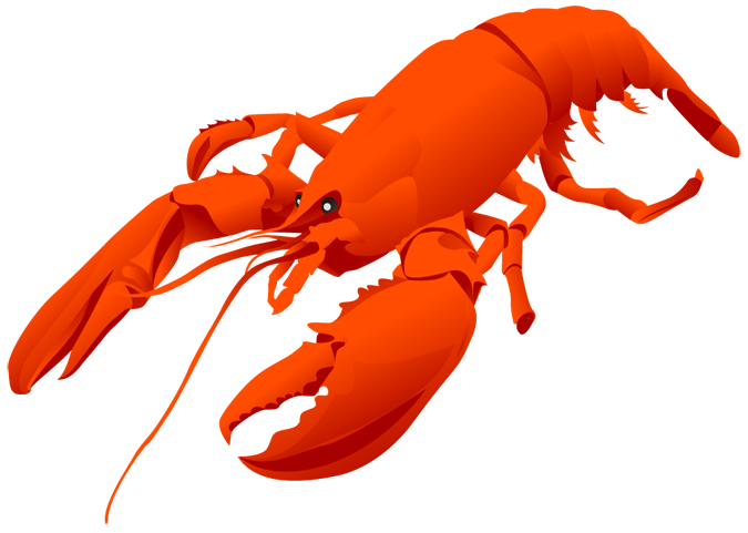 funny lobster clipart - photo #17
