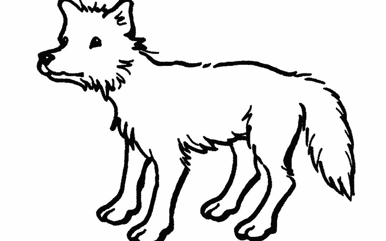 Line Drawing Pictures Animals : Line drawing animals clipart best