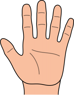36 clipart hand... Free Clip Art Of Hands