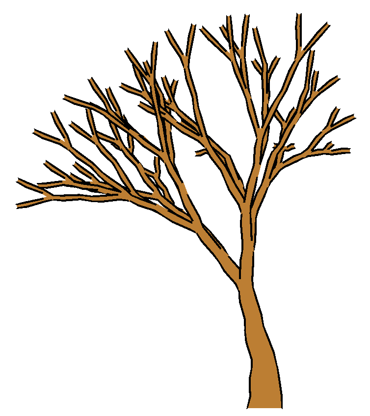 Cartoon Leafless Tree Clipart Best Follow the simple instructions and in no time you've created a great looking tree drawing. clipartbest