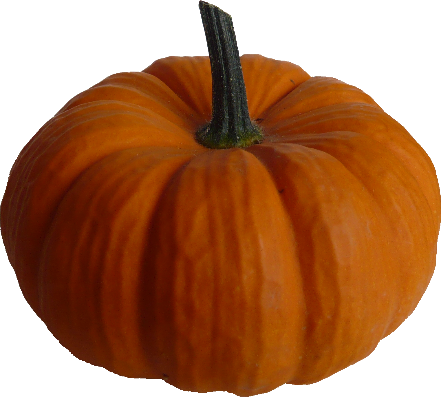 37 free pumpkin pictures free cliparts that you can download to you ...