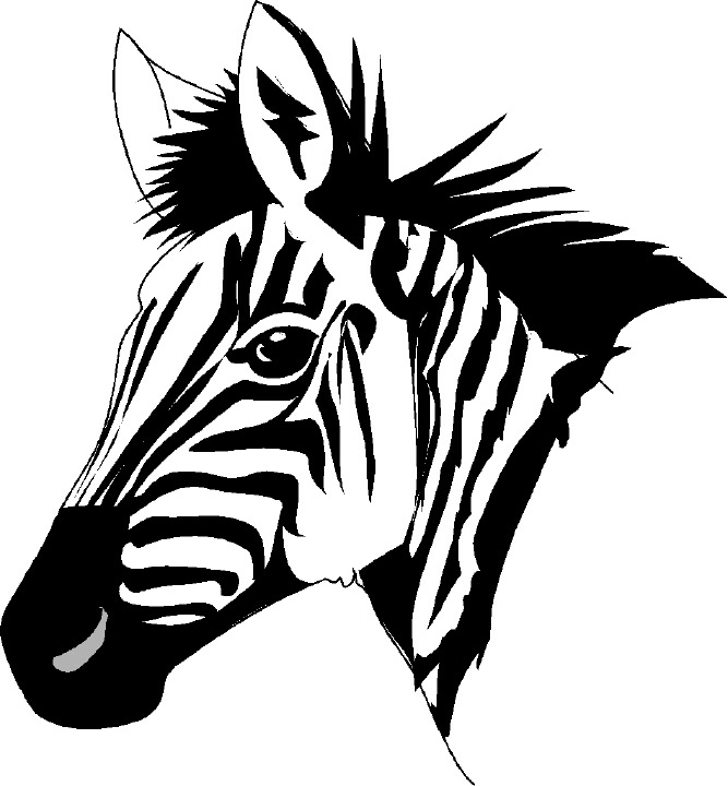 zebras clip art   Free cliparts that you can download to you    Zebra Head Coloring Pages