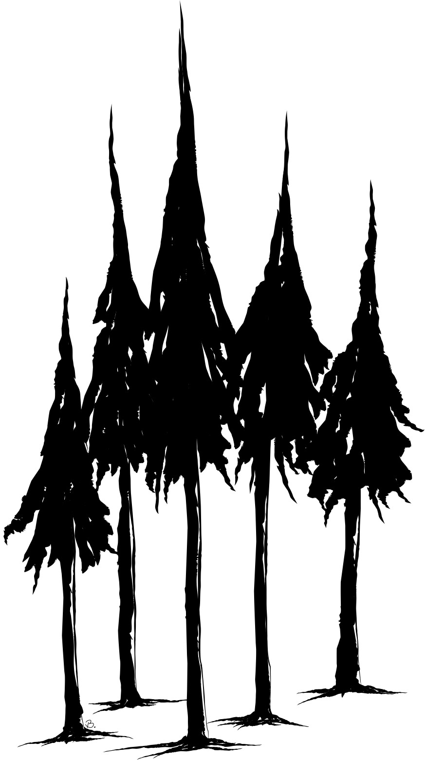 Pine Tree Drawings - ClipArt Best