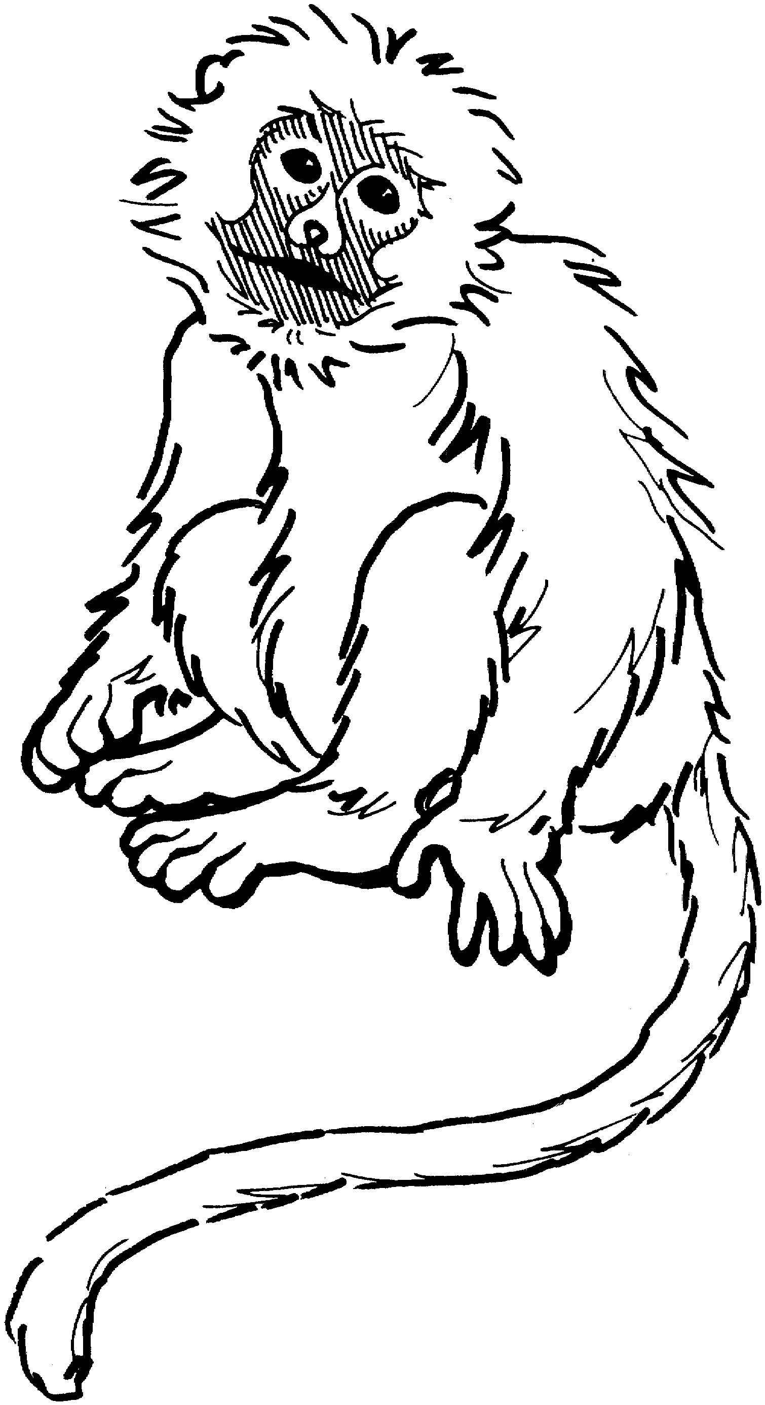 Coloring Monkey Clipart Best Where Can You Find Coloring Books