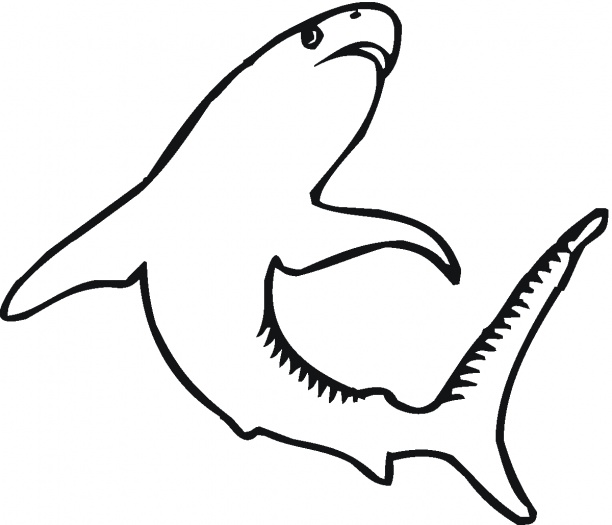 tiger shark coloring pages