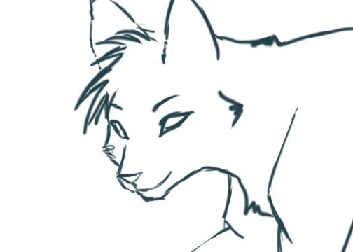 cat face outline clipart best