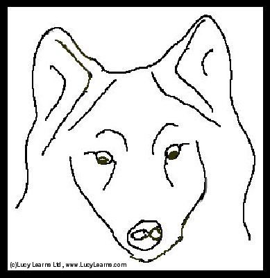 Free Wolf Coloring PagesLearn How To Draw A WolfPrint