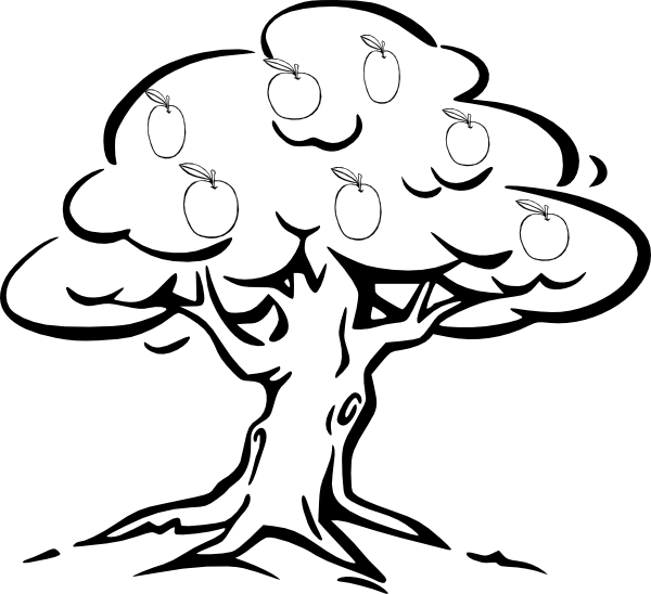 Line Art Of Trees : Line drawing of tree clipart best
