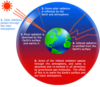 global warming 33 essay