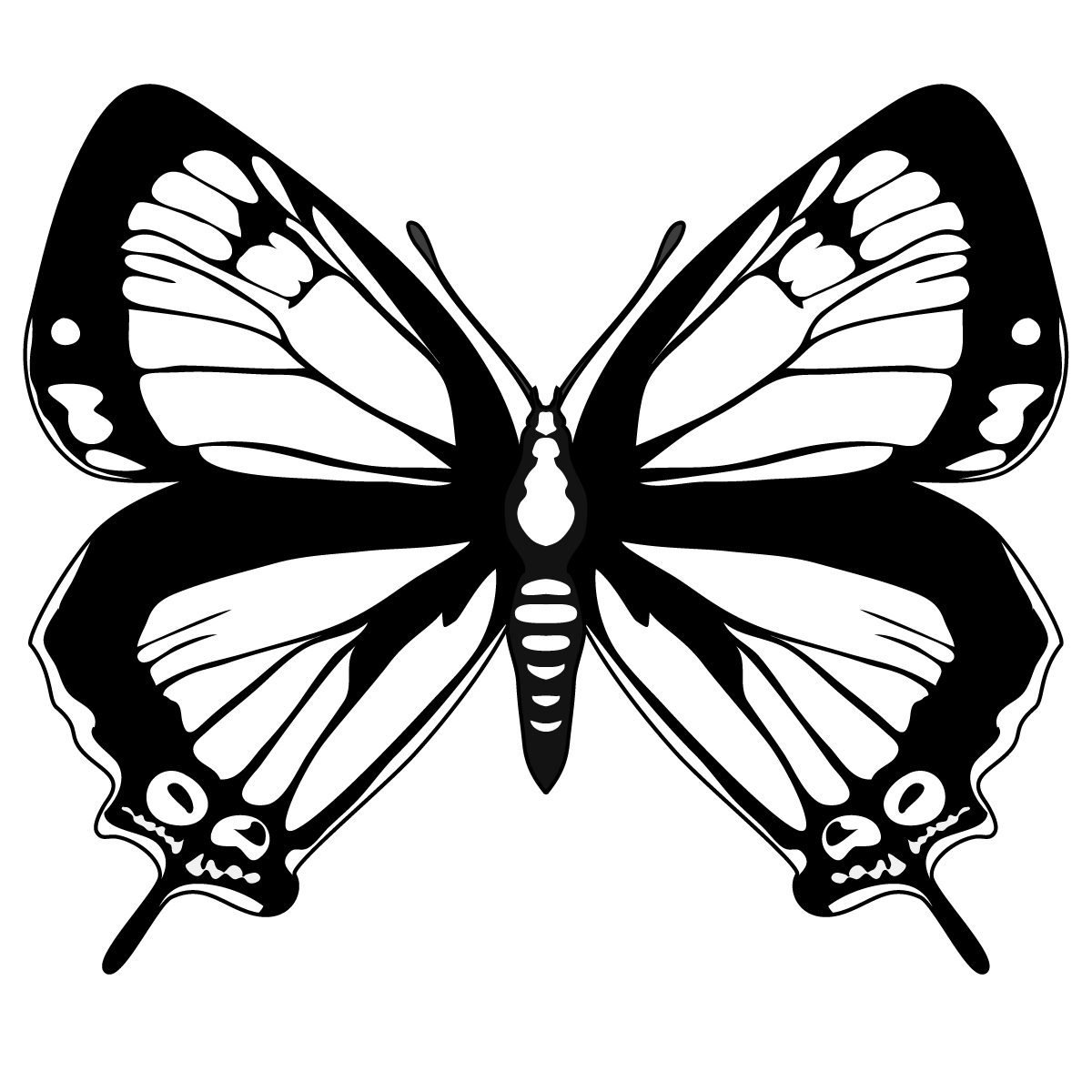Butterfly Clip Art Black And White Clipart Best