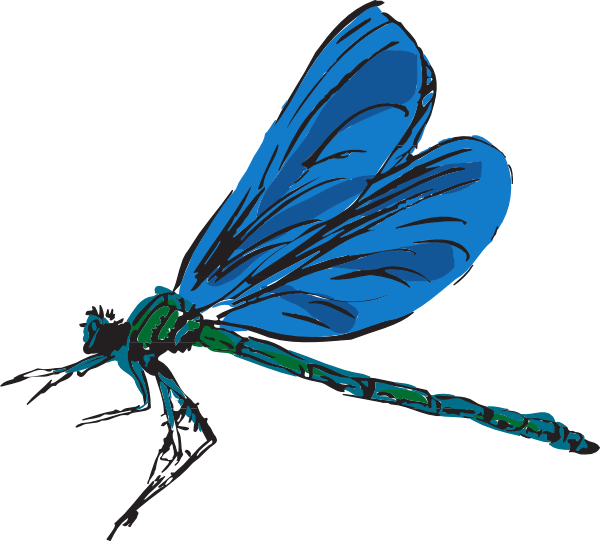 cartoon dragonfly pictures . Free cliparts that you can download to ...