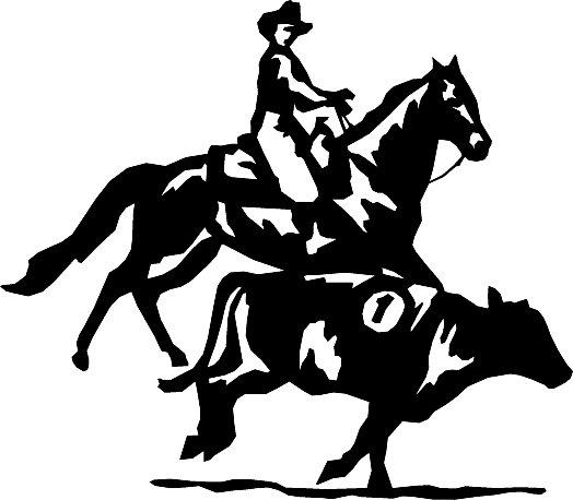 Reining Horse C...