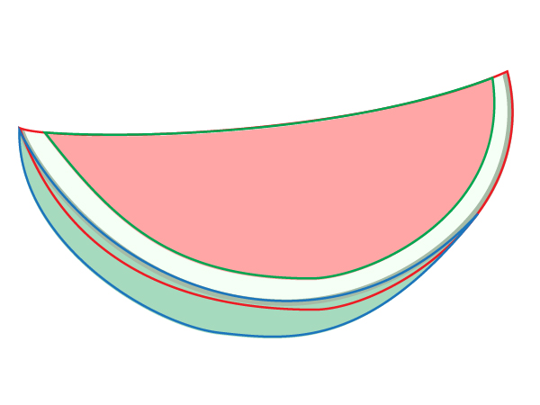 Drawing Line Qt : Water melon drawings clipart best