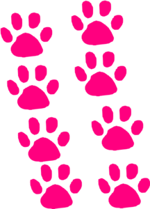 paw-prints-md.png