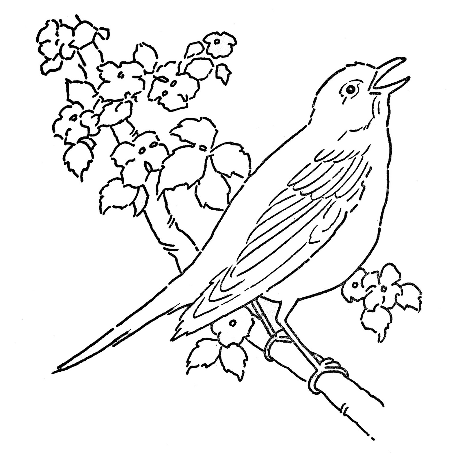 Photo To Line Art Converter Free Download : Line drawing of birds clipart best