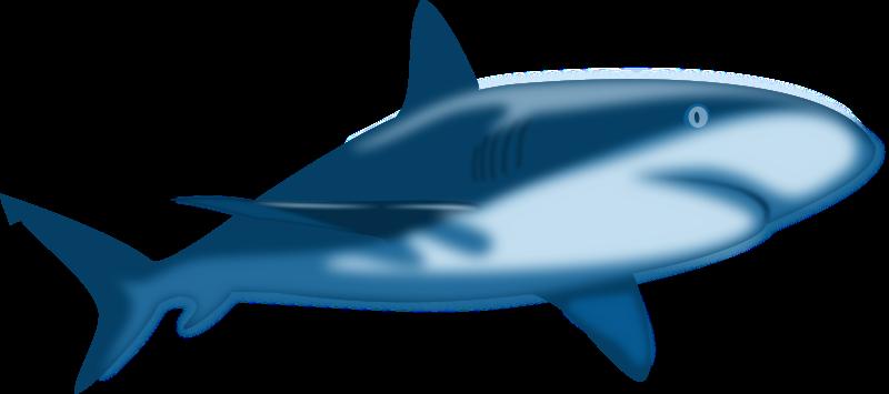 Free Shaded Blue Shark Clip Art - 107.3KB